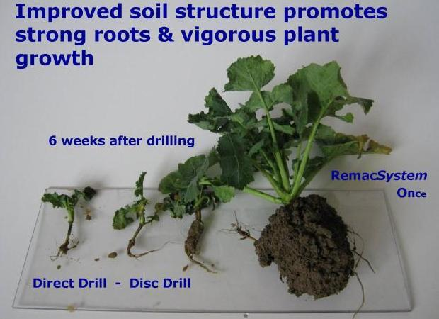 Soil_structure_Example_3115.jpg